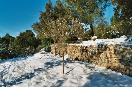 2003 - mur nord est