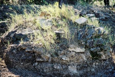 2003 - Borne conique